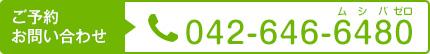 TEL:042-646-6480